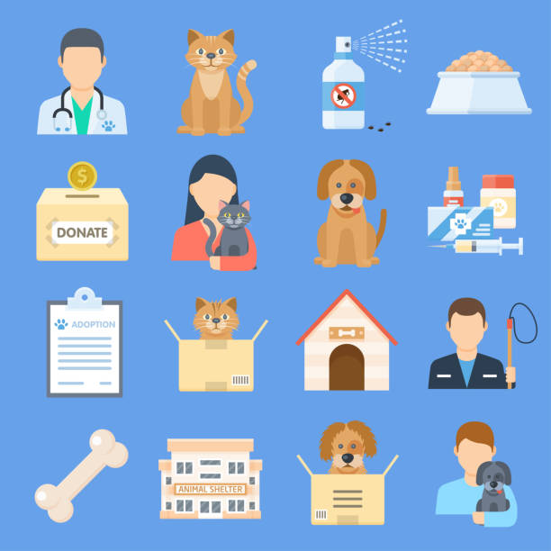 Pets shelter icon set Pets shelter icon set. Temporary home for dogs, cats, and other animals offered for adoption, place for sick or wounded pets. Vector flat style cartoon illustration isolated on blue background animal shelter stock illustrations