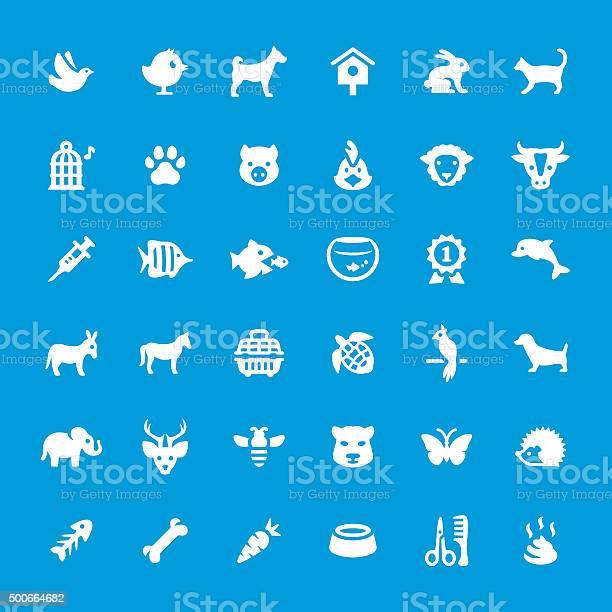 Pets vector icons set vector id500664682?b=1&k=6&m=500664682&s=612x612&h=lckxiypkbxervigugc695u1vcazmqcpwgex4zf5jnls=