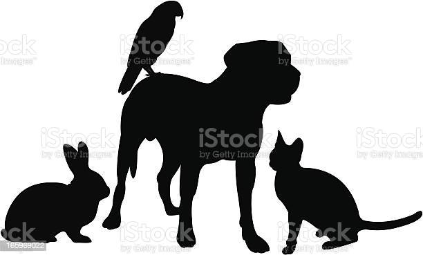 Pets vector id165969022?b=1&k=6&m=165969022&s=612x612&h=qd8pmchm0cx  ww9npoesj3cpw7nwugwtkee1l5ohzm=