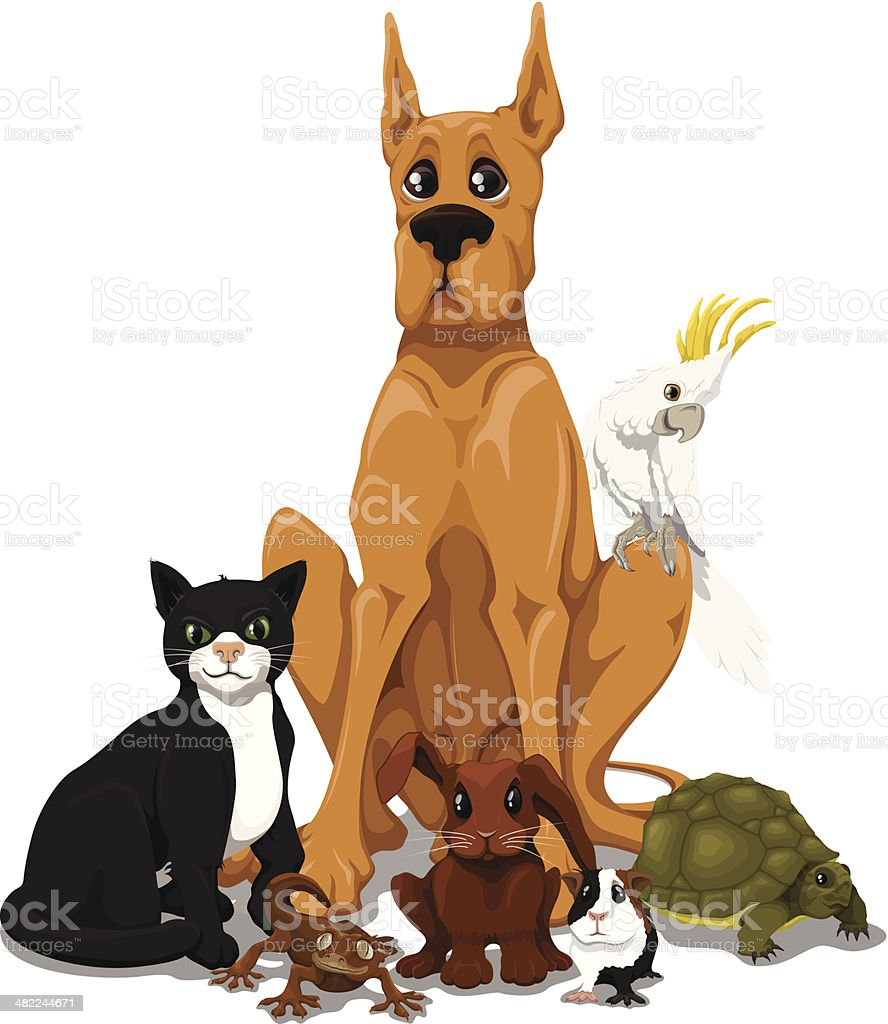 Pets royalty-free pets stock vector art & more images of animal