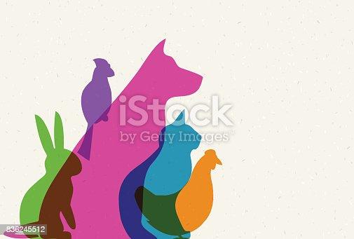 istock Pets 836245512