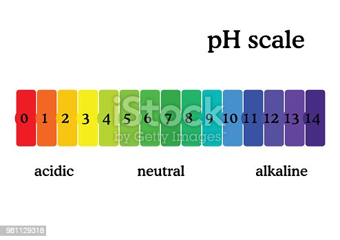 pH scale diagram with corresponding acidic or alcaline values. Universal pH indicator paper color chart. Colorful flat style vector illustration isolated on white background.