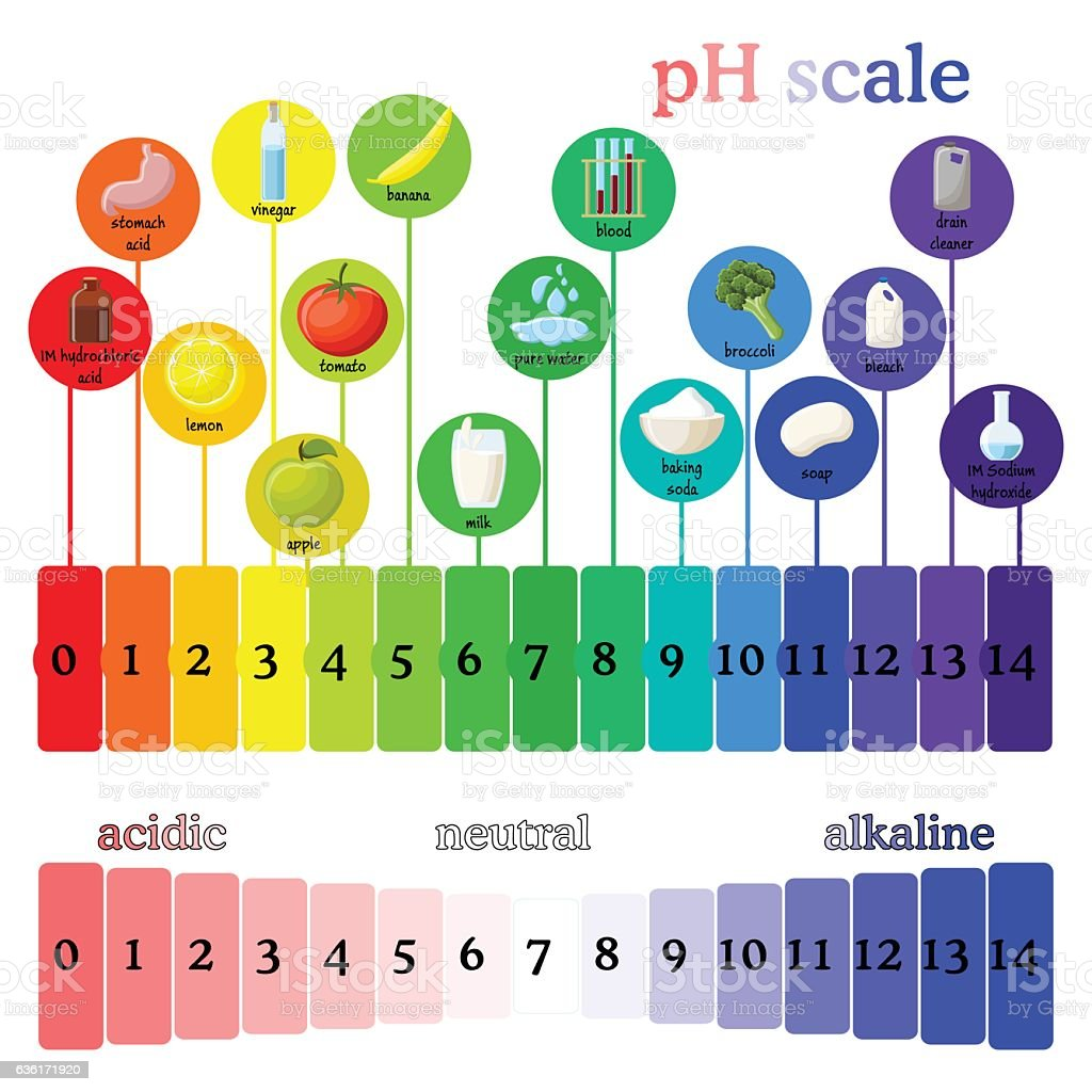 pH scale.  Litmus paper color chart. vector art illustration