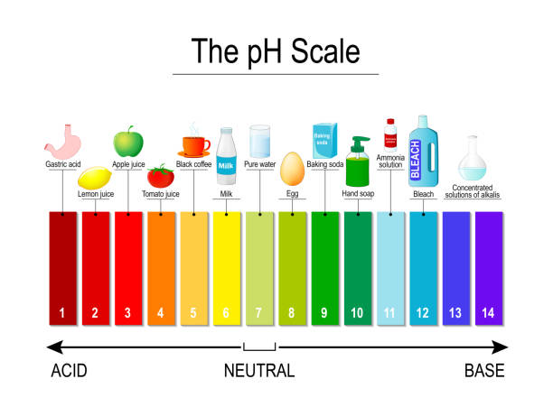pH scale. Universal Indicator pH. Test Strips pH scale. Universal Indicator pH. Test Strips use for Track and Monitor pH for Alkaline and Acid levels. Color vector diagram for educational, medical, science use acid stock illustrations