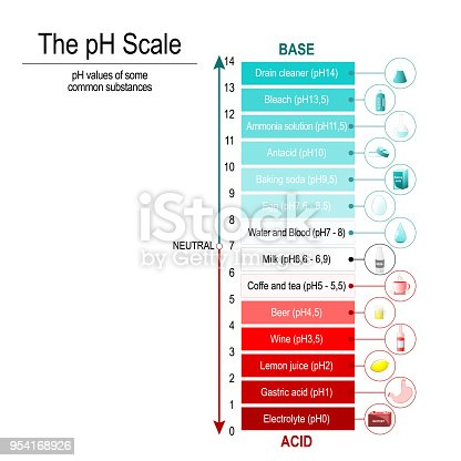 pH scale with pH values of some substances. Vector diagram