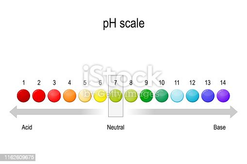 ph value scale. Acidic, neutral and alkaline pH of various liquids and solvents. Acid-base balance. infographic. Vector diagram for educational, medical, biological and science use