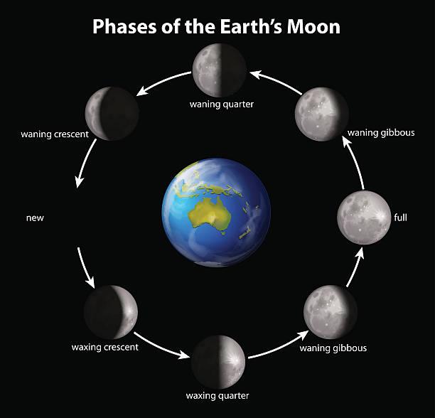 Royalty Free Waxing Crescent Moon Clip Art Vector Images