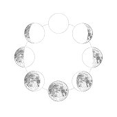 Phases of the moon, monochrome hand drawn vector illustration, isolated on white background