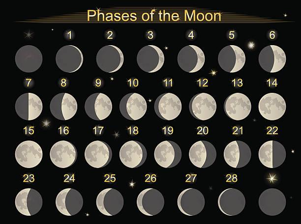 illustrazioni stock, clip art, cartoni animati e icone di tendenza di fasi di luna - luna gibbosa
