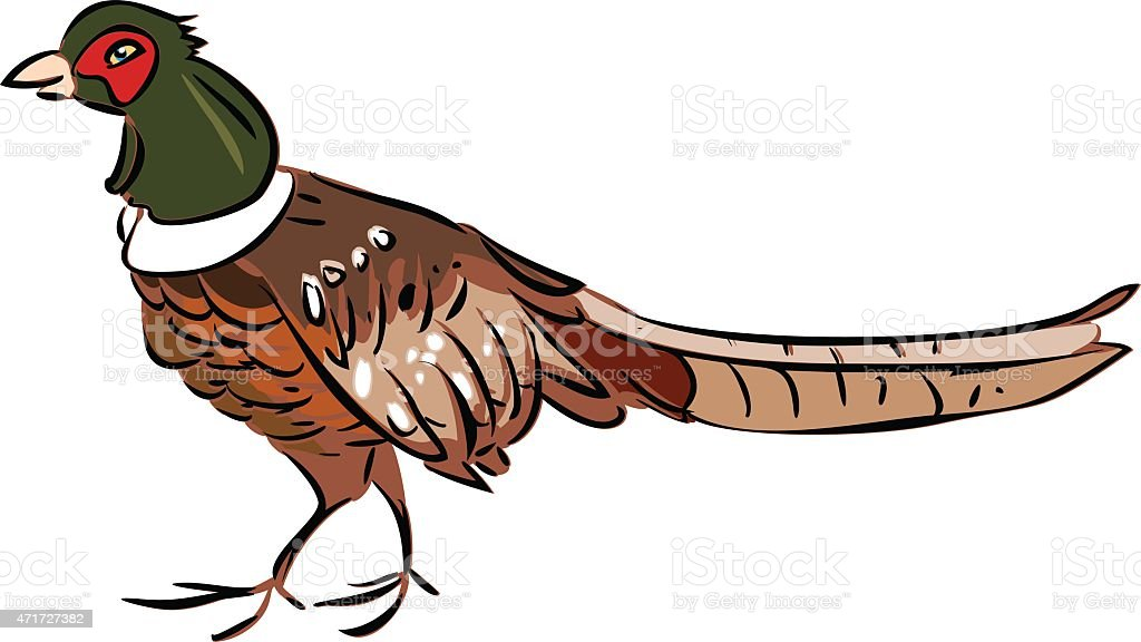 royalty free pheasant cartoon clip art vector images rh istockphoto com pheasant clipart flying peasant clip art