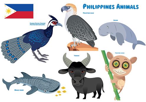 Philippines Animals