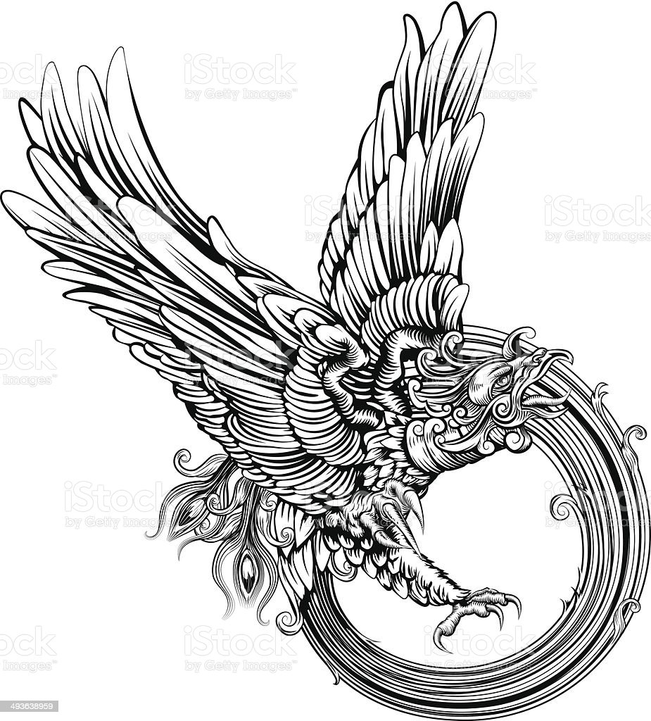 Phoenix bird or eagle vector art illustration