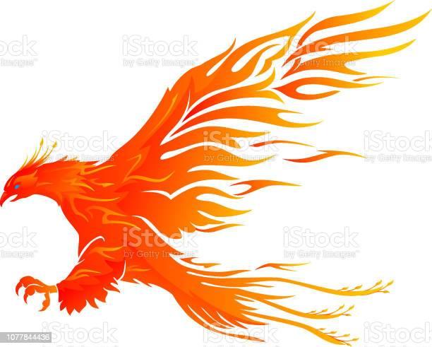 Phoenix bird vibrant flame vector id1077844436?b=1&k=6&m=1077844436&s=612x612&h=ufqb6nwpgv shzliwqqyd ssa8wmqwkmh  no3mx9ks=