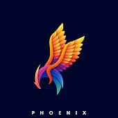 Phoenix Color Illustration Vector Template