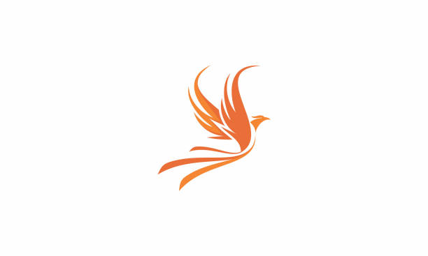 phoenix fire logo vector icon - birds stock illustrations