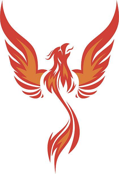 vector de Phoenix - ilustración de arte vectorial
