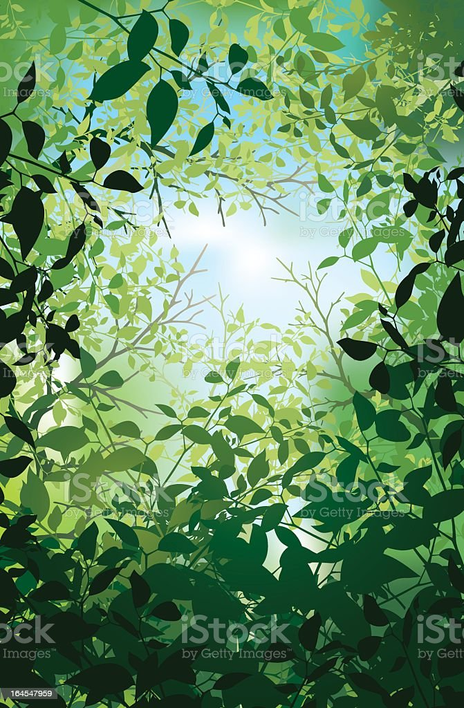 Photo of a green leafy background royalty-free photo of a green leafy background stock vector art & more images of backgrounds