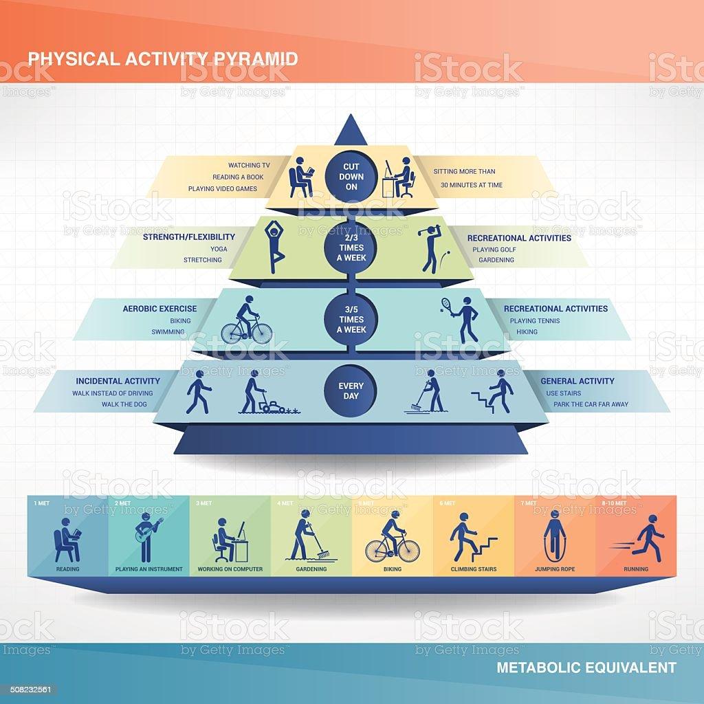 Physical activity pyramid vector art illustration