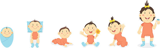 stockillustraties, clipart, cartoons en iconen met physical development of the child up to 1 year,vector - hair grow cyclus