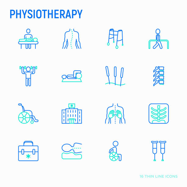 Physiotherapy thin line icons set: rehabilitation, physiotherapist, acupuncture, massage, gymnastics, go-carts, vertebrae; x-ray, trauma, crutches, wheelchair, orthopedic pillow. Vector illustration. Physiotherapy thin line icons set: rehabilitation, physiotherapist, acupuncture, massage, gymnastics, go-carts, vertebrae; x-ray, trauma, crutches, wheelchair, orthopedic pillow. Vector illustration. physical therapy stock illustrations