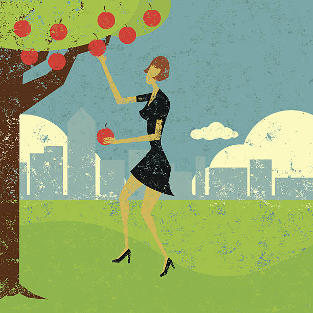Pick the low hanging fruit A woman picking the low hanging fruit. The woman & tree and background are on separate labeled layers. picking harvesting stock illustrations