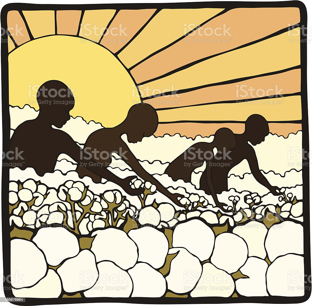 Picking Cotton vector art illustration
