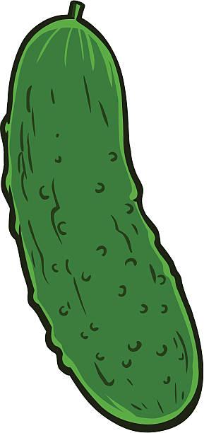 Pickle vector art illustration
