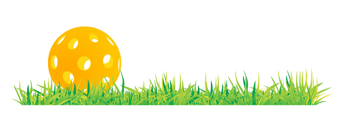Pickleball with green grass vector illustration on white background