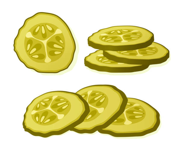 Pickled cucumber slice isolated on white background. Marinated pickled cucumber isolated. Vector Illustration. Pickled cucumber slice isolated on white background. Marinated pickled cucumber isolated. Vector Illustration pickle slice stock illustrations