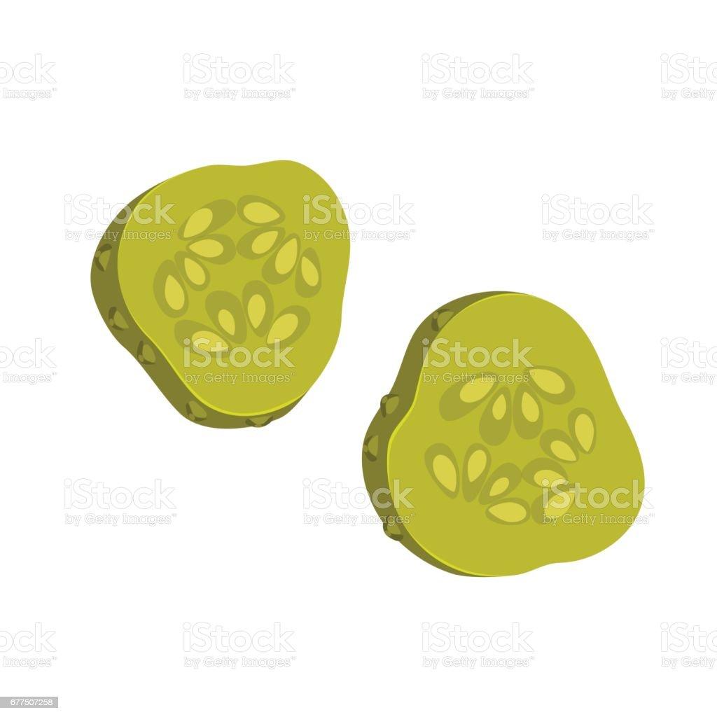 Pickled cucumber slices vector art illustration