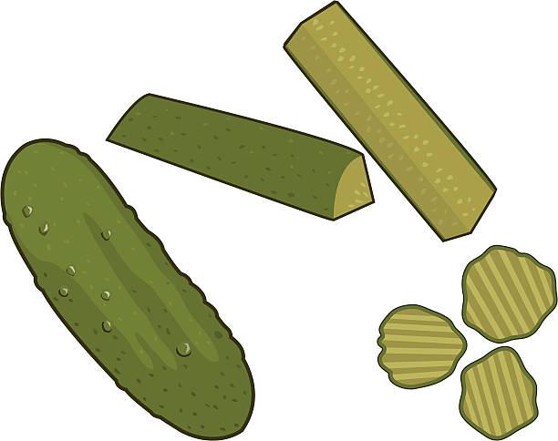 Pickles vector art illustration