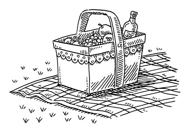 Picnic Basket With Fruits And A Bottle Of Wine Drawing vector art illustration