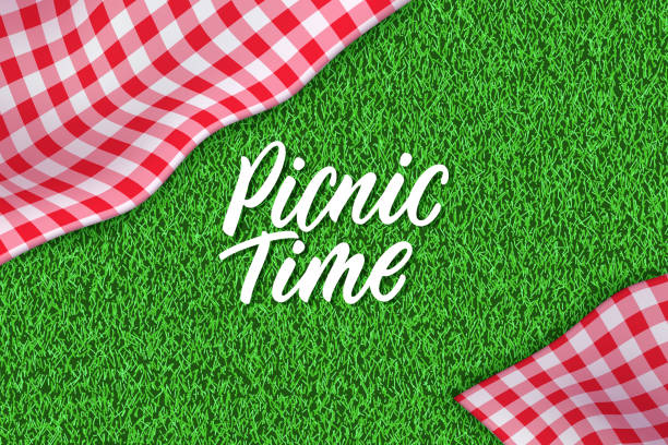 Picnic horizontal background. Vector poster or banner template with realistic red gingham plaid on green grass lawn Picnic time hand drawn calligraphy lettering. Horizontal spring or summer background with tablecloth on green grass. Vector poster or banner design template with realistic red gingham plaid on lawn picnic stock illustrations