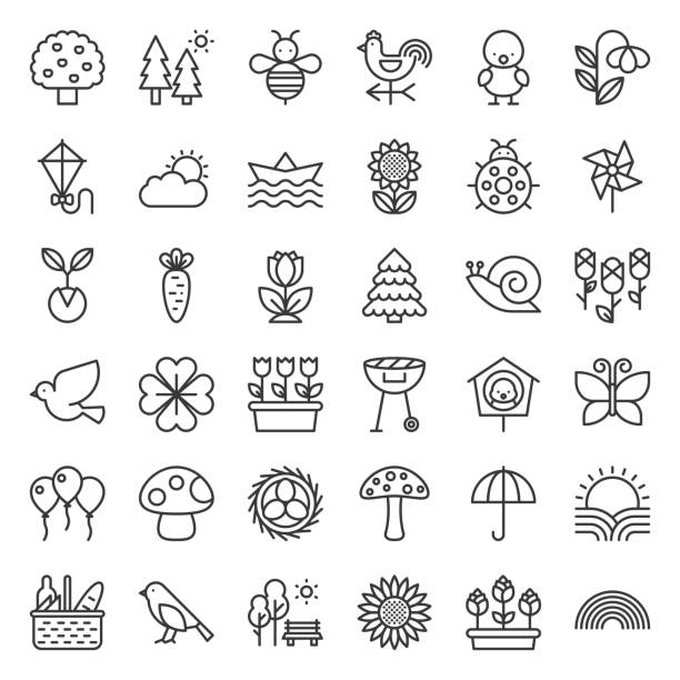 Picnic, nature and spring icon set, such as picnic basket, floral, bird, rainbow, bird nest, playing kite, sun raising, outline icon Picnic, nature and spring icon set, such as picnic basket, floral, bird, rainbow, bird nest, playing kite, sun raising, outline icon bird symbols stock illustrations
