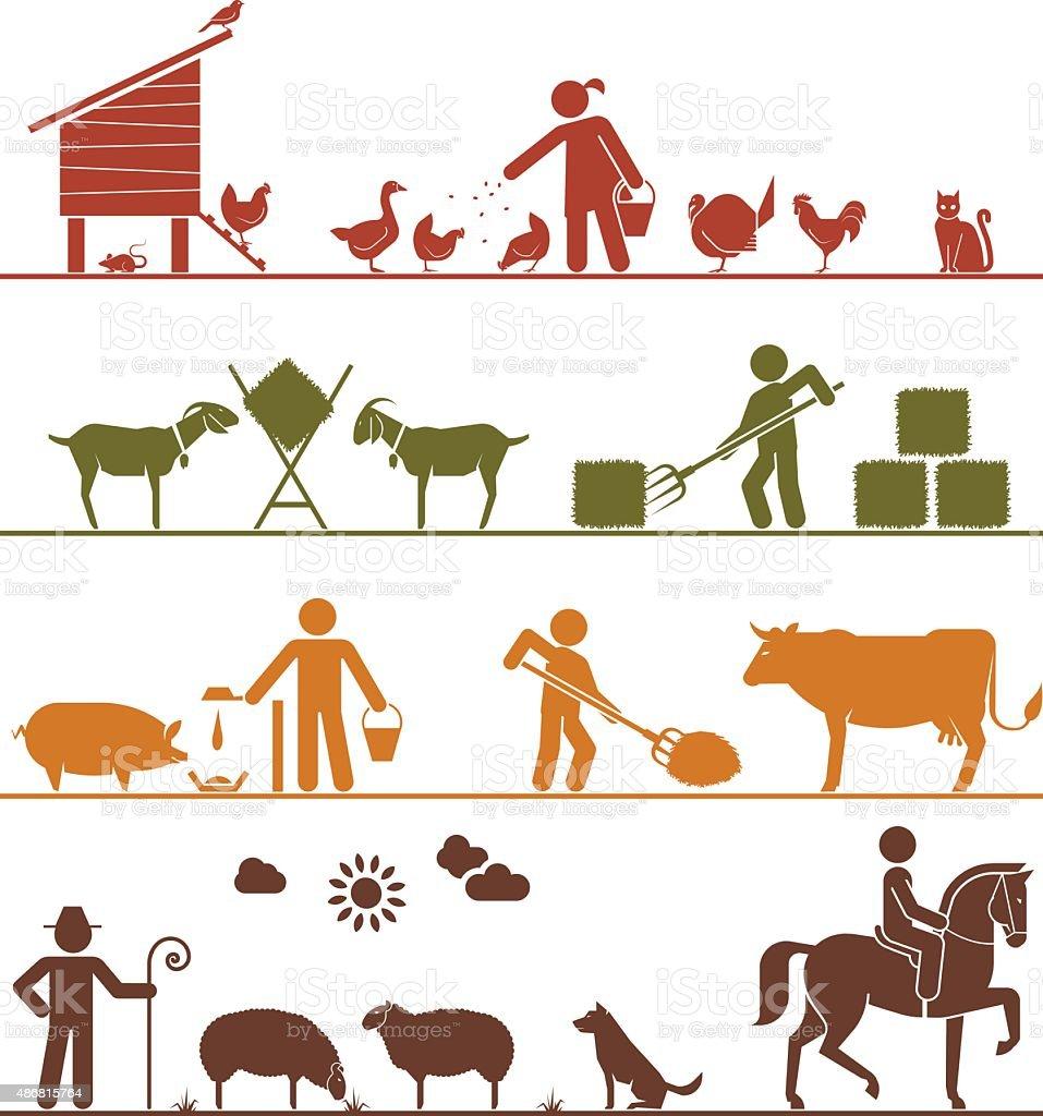 Pictogram icons presenting feeding of domestic animals. vector art illustration