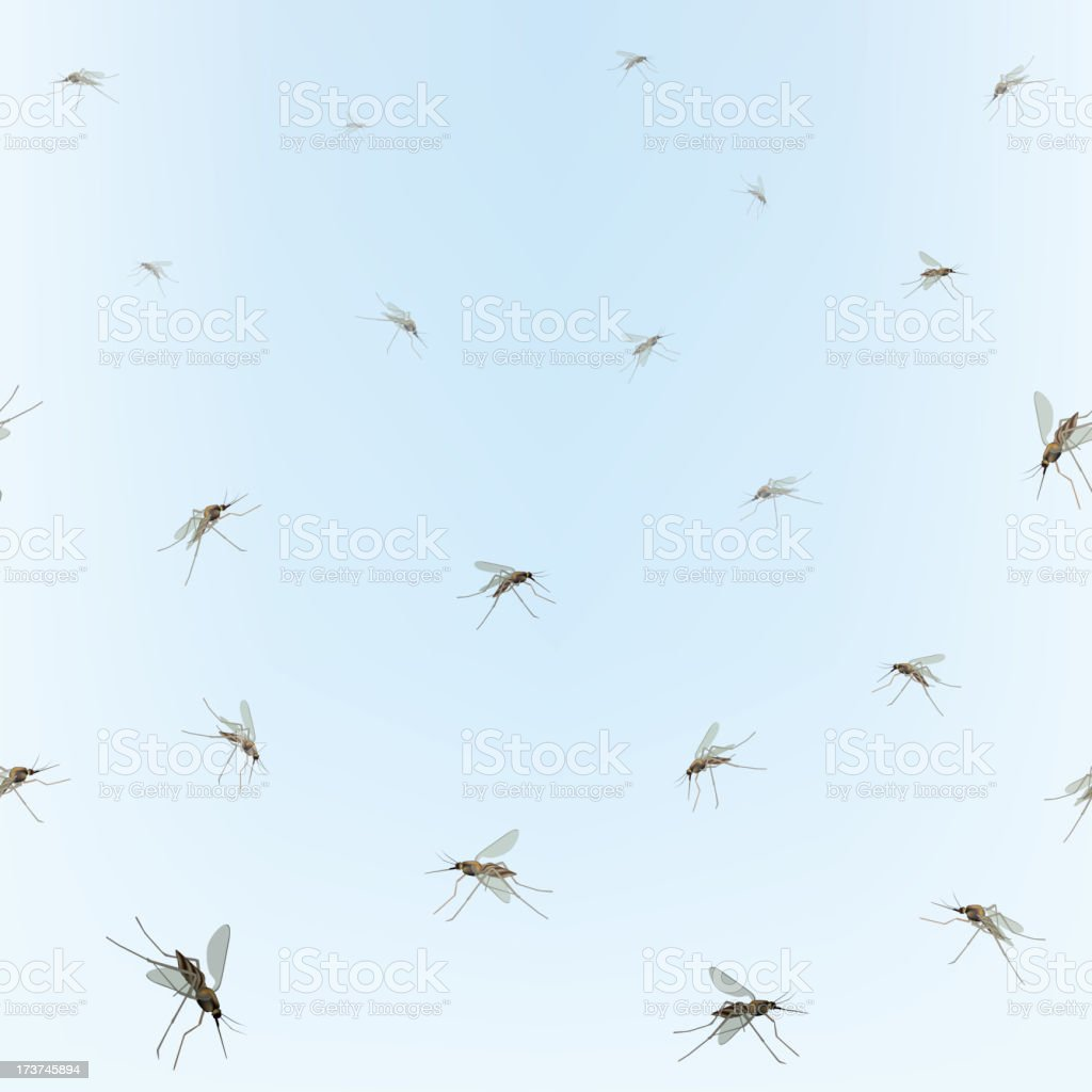 A picture of a group of mosquitoes vector art illustration