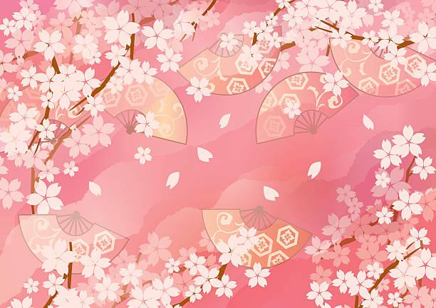 ilustrações de stock, clip art, desenhos animados e ícones de picture of beautiful cherry blossoms of japan - cherry blossoms