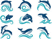 istock Pictures of dolphins and other marine animals. Logo design template 953741394