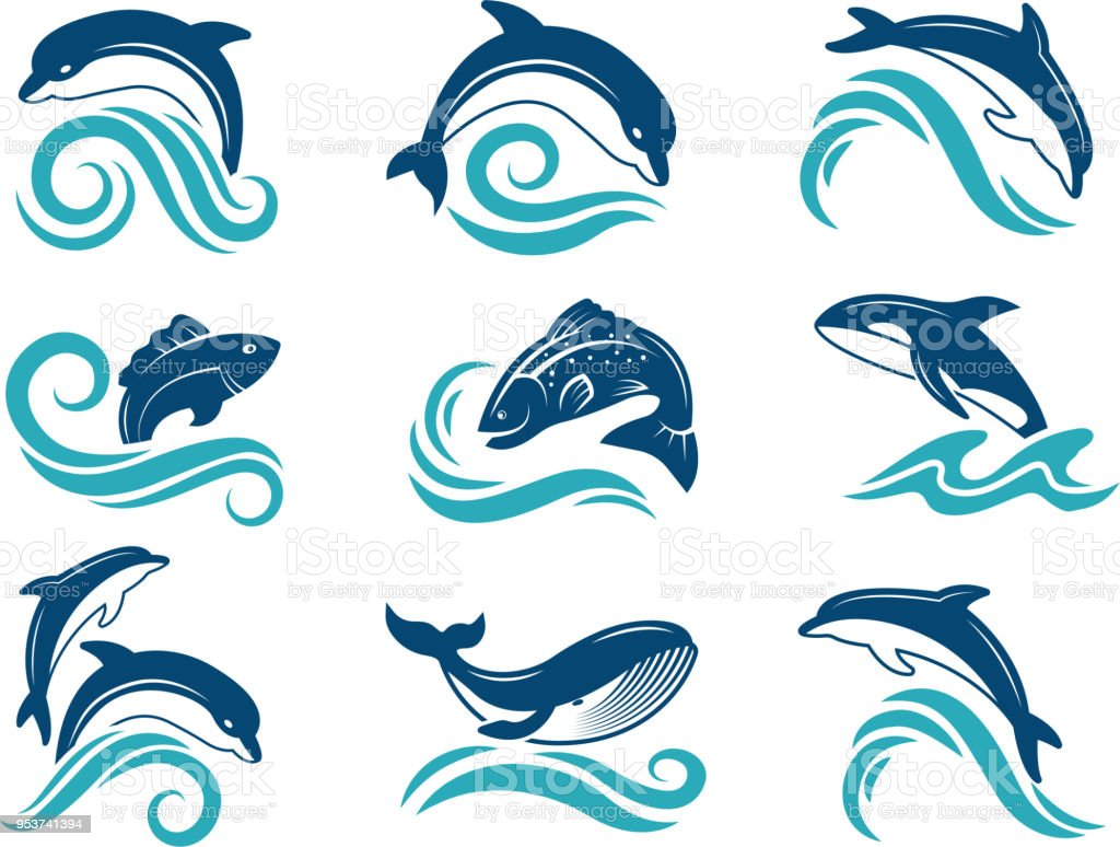 Pictures of dolphins and other marine animals. Logo design template vector art illustration