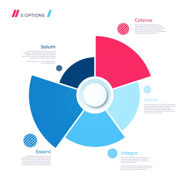 pie chart concept with 5 parts. vector template for web, presentations, reports, visualizations - pie chart stock illustrations, clip art, cartoons, & icons