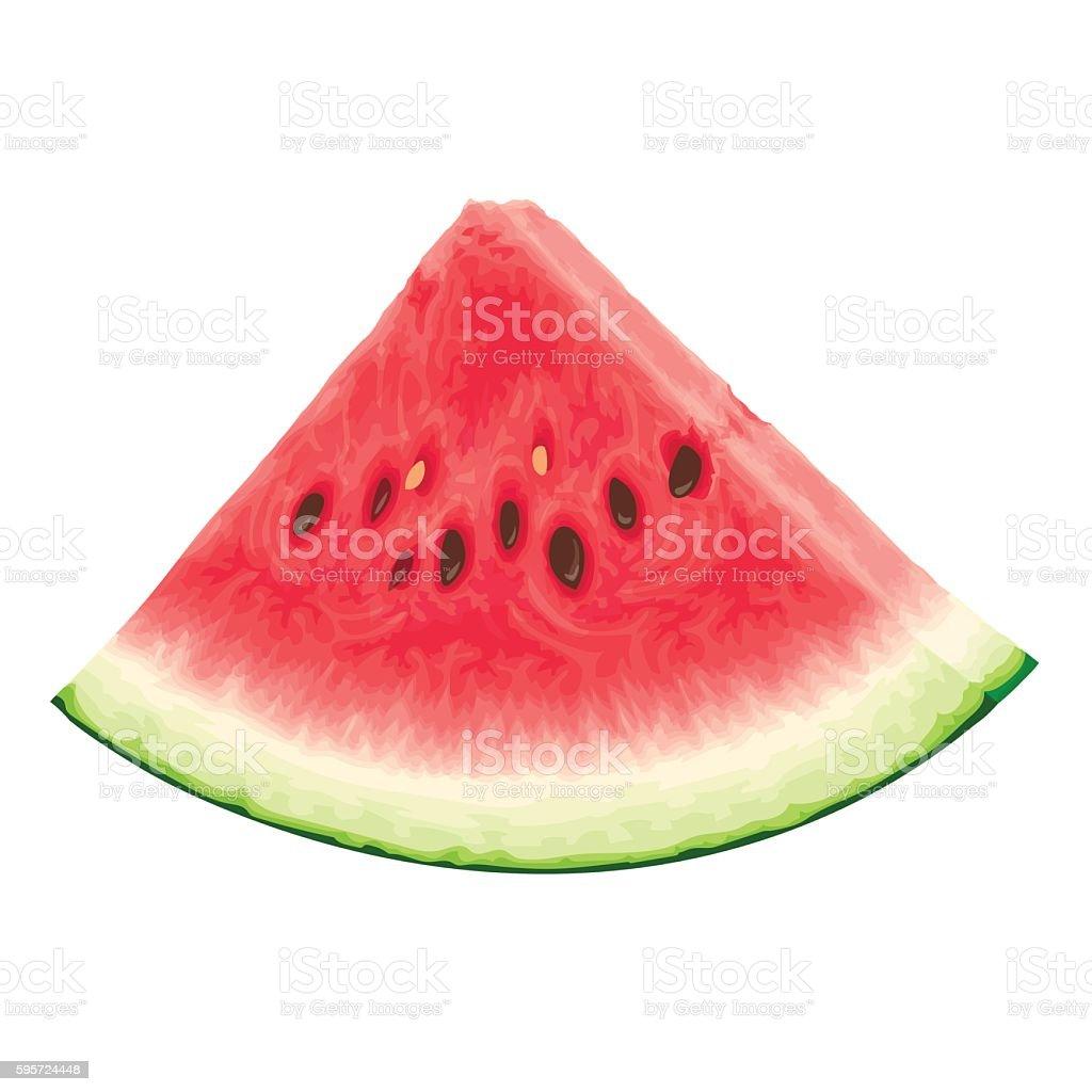 Stuck Wassermelone Stock Vektor Art Und Mehr Bilder Von Abnehmen