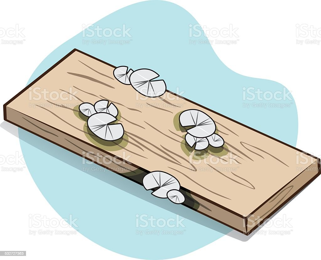 Piece of wood with exposed rotted with fungi. vector art illustration