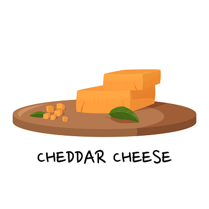 Pieces of Cheddar cheese on a wooden tray. Realistic vector illustration isolated on white background.
