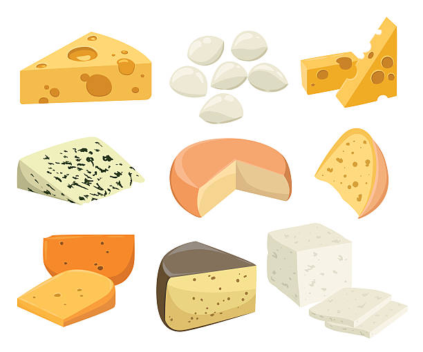 Pieces of Cheese isolated on white. Pieces of Cheese isolated on white. Popular kind of cheese icons isolated. Cheese types. Modern flat style realistic vector illustration feta cheese stock illustrations
