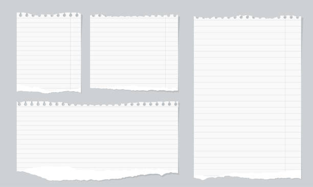 pieces of torn white lined notebook paper on gray background - lined paper stock illustrations