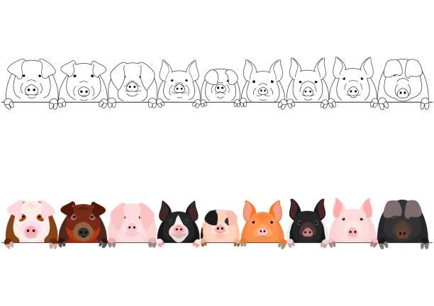 pig head border set vector art illustration