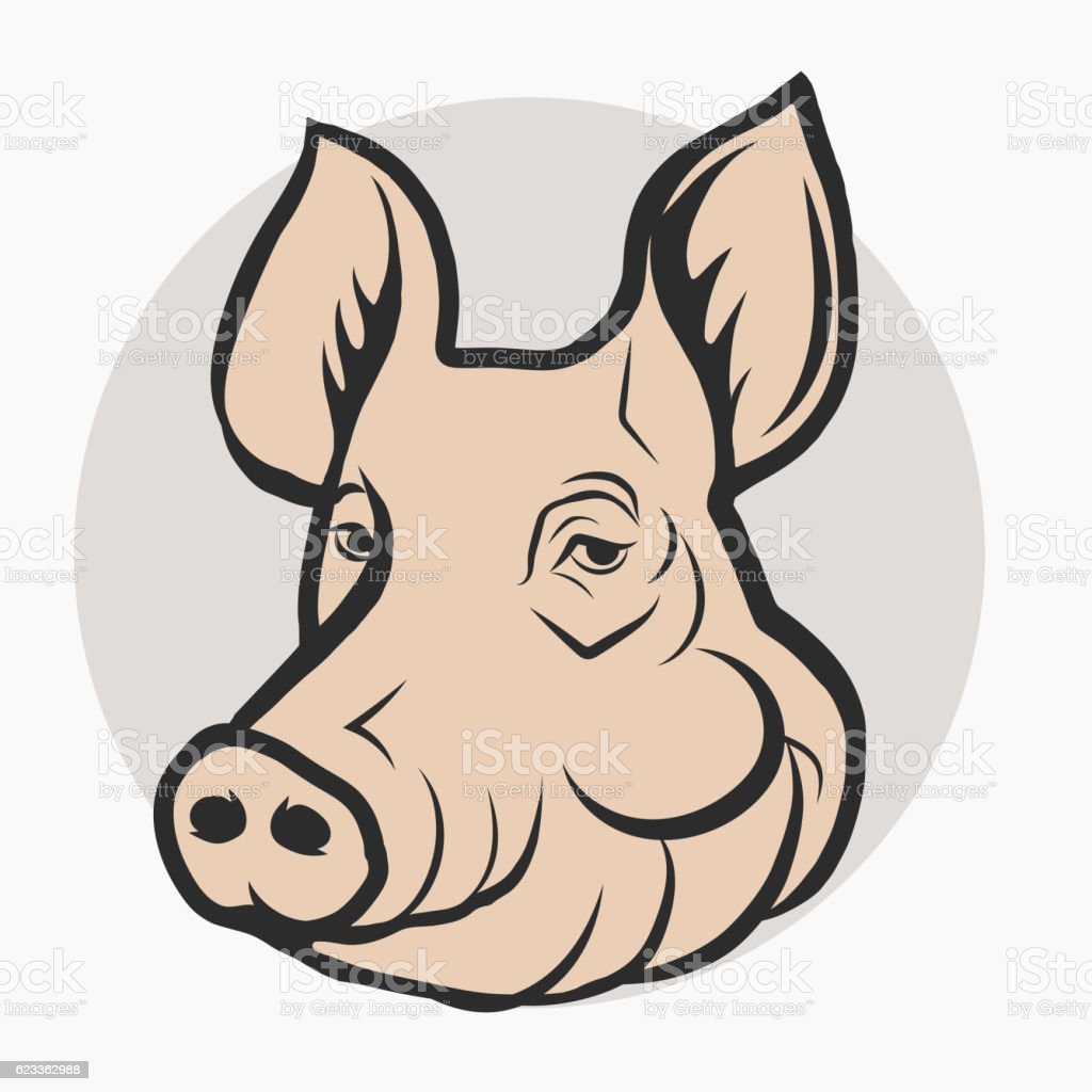 Get Pig Head Cartoon Images Pictures