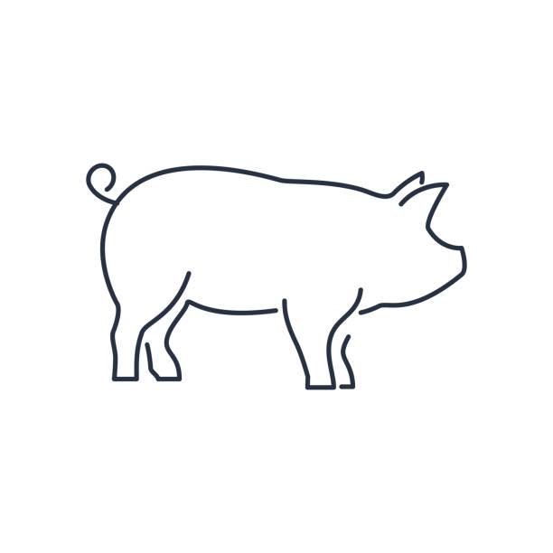 76,023 pig illustrations & clip art - istock  istock