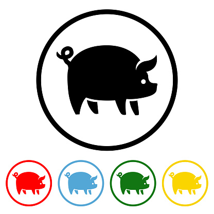 Pig Icon with Color Variations
