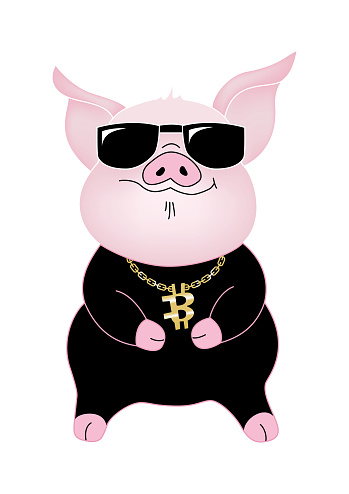 Pig in black costume in sunglasses with a chain around his neck and a bitcoin pendant.